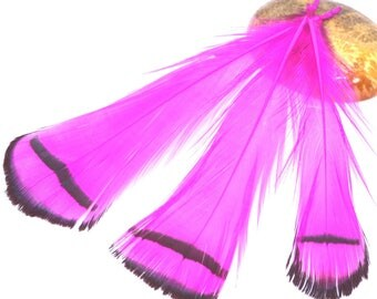5 feathers natural fuchsia and white 7 / 9cm
