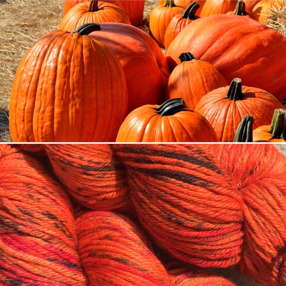 Pumpkin DK, Halloween theme superwash merino indie dyed yarn
