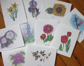 Floral Note Card Pen and Ink and Colored Pencil Assortment  - Exclusively Flowers Note Card Package