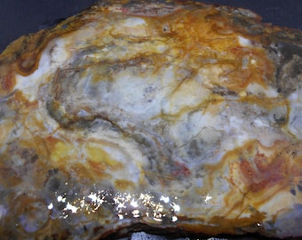 Jasper/Agate slab, from a vintage collection. #207