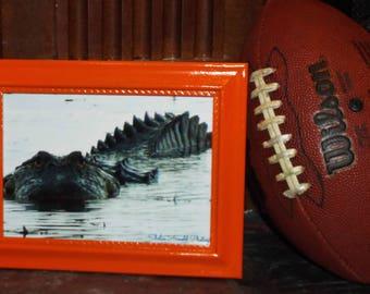 Florida Gator Wall Art gator decor | etsy