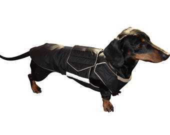 Dachshund Winter Dog Coat - Dog Jacket with underbelly protection - Custom made Dog Coat - Waterproof / Fleece Dog Clothes - MADE TO ORDER