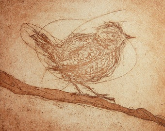 ORIGINAL WREN BIRD Print - Handmade Bird Etching - Fine Art Scotland - Original Bird Art - Wren Bird Etching - Handmade Wren Art