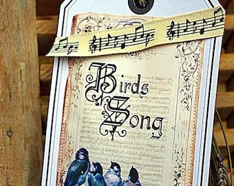 """Magical postcard """"song birds"""""""