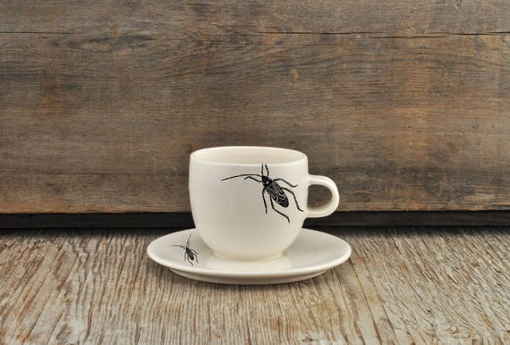 Porcelain espresso / tea cup and saucer with vintage INSECT prints