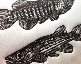 Printmaking print etsy for Big fish screen printing