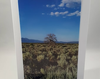 New Mexico Desert Stationary Set, Taos Cards, Taos Desert, Thank You Note, Hello Note, Blank Greeting Cards, Pack of 2, Nature Landscape
