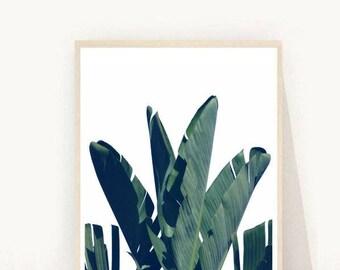 Banana Leaves, Leaf Print, Tropical Leaf Print, Tropical Wall Art,  Black and white Leaves, Printable Art, Digital Download, Wall Decor