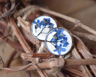 Forget me not jewelry Forget me not earrings flower earrings resin jewelry stud earrings blue earrings nature earrings bridesmaid jewelry