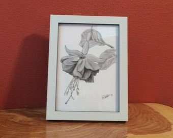Clearance Sale! Black and White Fuchsia Print Framed *71% OFF*