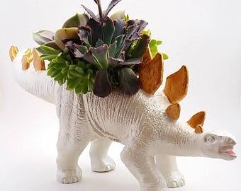 upcycled planter dinosaur succulent dinosaur decor unique