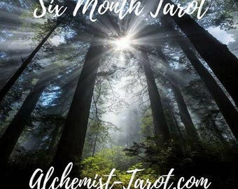 Six Month Tarot Reading by Email | Love, Life, Career, By Psychic Tarot Reader of 27 years experience