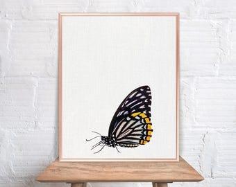 Butterfly wall art / Butterfly home decor / Butterfly Print / home decor Butterfly / Butterfly Art / Butterfly Wall Decor #56