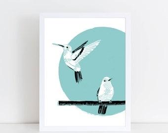 Colibris / Hummingbird