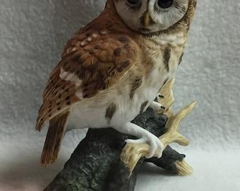 Maruri Eyes of the Night - Tawny Owl (#055)