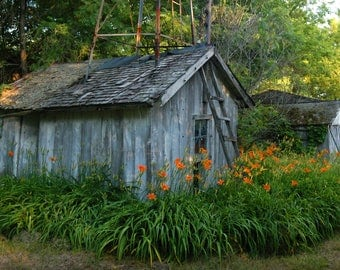 FARM PUMPHOUSE & GARAGE In Wisconsin, Surrounded by Beautiful Greenery and Flowers.