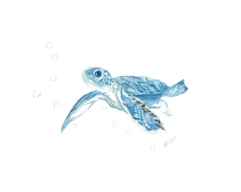 Baby Sea Turtle in Blue