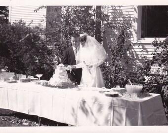 Wedding Photo Cut the Cake - Found Photograph - Original Photograph, Vintage Photo,  Photography, Snapshot, Portrait, Old photo
