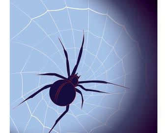 Print: Spider and Web Digital Vector Drawing