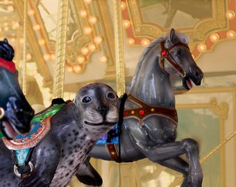 Carousel Art Print, Boardwalk Photograph, Sea Lion Art, Carousel Horse, Dreamy Photo, Circus Theme Nursery or Kids Bedroom