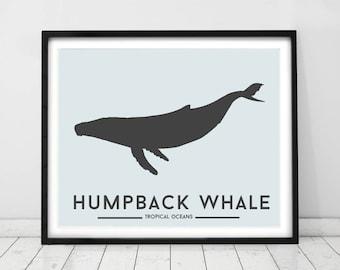 Whale Print, Nursery wall art, Marine animal decor, Baby nursery prints, Humpback whale, modern childrens bedroom art