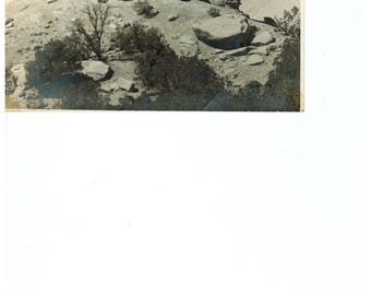 Vintage Desert Postcard New Mexico Postcard Black and White Photo Post Card Vintage Postcards El Rito New Mexico
