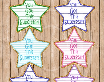 Special Kids Lunchbox Notes Sticker You got this gold sticker Child motivational sticker kid mini pocket card you got this notes star tags