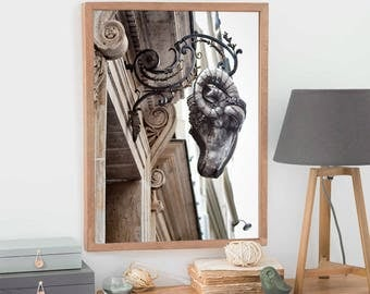 Paris architectural Photography, Paris art detail, Silver Ram wall art decor, Vertical art print, 16x20, Paris photo, 11x14, Metallic prints
