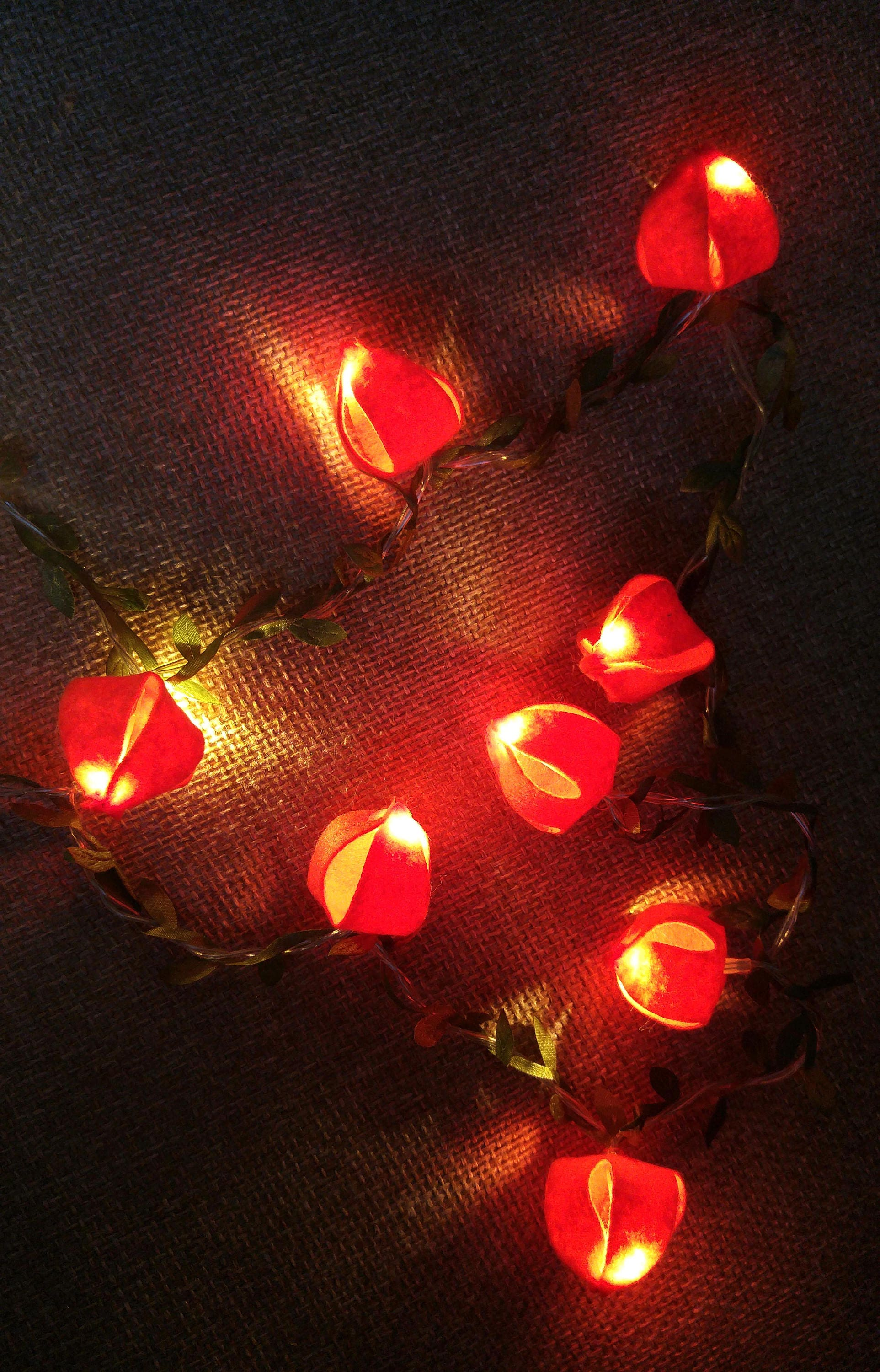 String Lights Physalis Flowers Fairy Lights Wedding Decoration Led Garland  Lights Holiday Lights Bedroom Decor Flowers