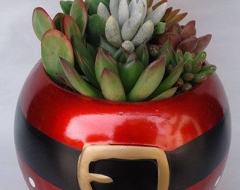 Medium Succulent Arrangement in a Ceramic Santa Ball Planter. Beautiful, complete dish garden.
