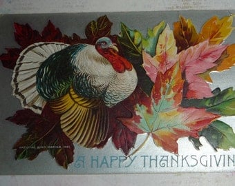Turkey With Colorful Maple Leaves Antique Thanksgiving Postcard
