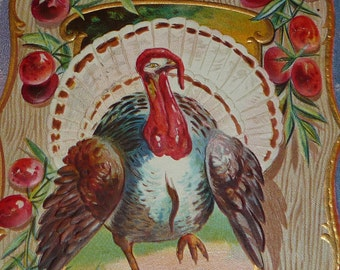 Turkey With Cranberries Antique Thanksgiving Postcard