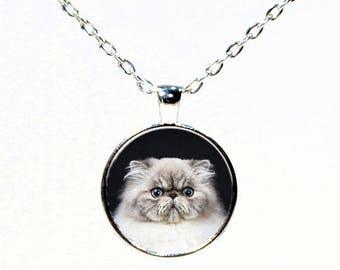 Grey Persian Cat Pendant Necklace - Cat Jewelry - Kitten Jewelry -  Silver Round Pendant Necklace