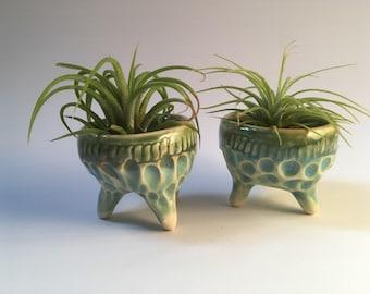 Mini Air Plant Pottery Planters; ceramic air plant vases, includes air plant
