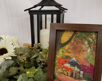 Autumn cottage colorful photo