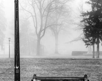 Bench and Pathway on a Foggy Day