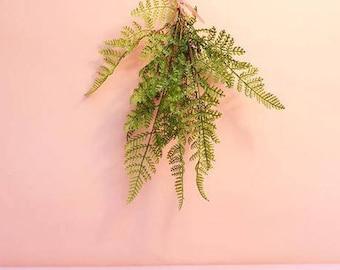 Artificial Fern Bush, Fern Bundle, 7 Stems in a Bundle / Faux Fern Plant for Centerpieces Floral Arrangement Bouquets