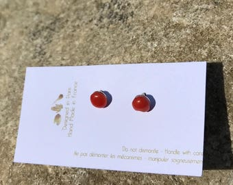 Studs earrings, antique coral, new silver setting