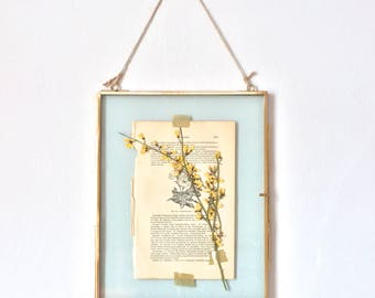 hanging glass specimen frame with yellow pressed flowers - large