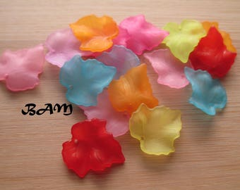 Set of 10 sheets lucites multicolor