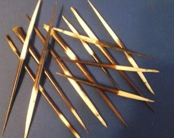 African Porcupine Quills 3