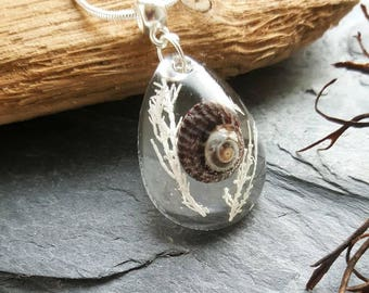 Terrarium Top Shell Necklace