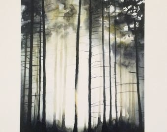 Forest painting, forest print, forest watercolor, Misty forest, tall trees, pine tree painting, Misty pines, Misty trees, watercolor trees