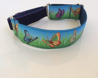 Butterfly martingale dog collar