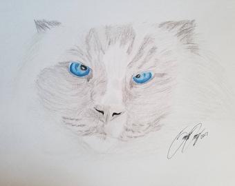 Personalized Portrait (Color)
