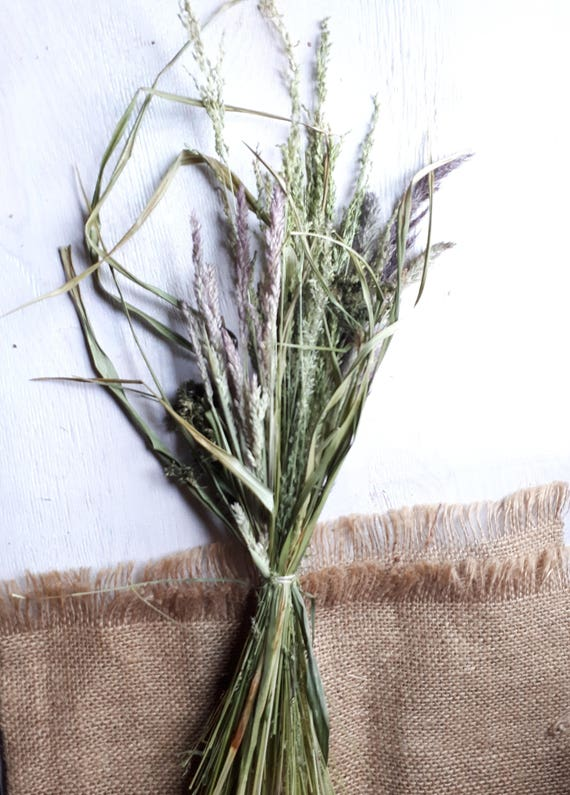 Dried Grass Bunch Natural Home Decor Vase Fillerrhetsy: Dried Grasses Home Decor At Home Improvement Advice