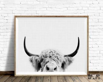 Farm animal print Cow print Animal art Animal portrait Animal wall art Highland cow print Farm nursery Animal poster Highland cow art poster