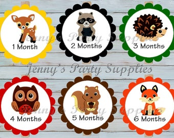 12 Month Woodland Animals Banner, Forest Friends Banner, Owl Fox Year Clothespin Banner, Baby Milestone Picture Banner, I am One
