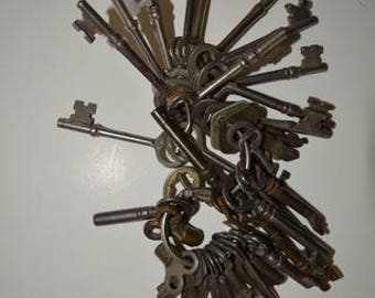 Skeleton Keys Small