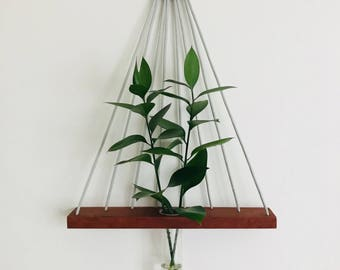 Linear hanging wall vase, wall vase, hanging plants, minimalist, wall hanging, reclaimed wood